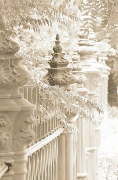 Just loved this, winter snow against the white iron fence!