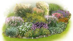 Gartenplan für ein Gräserbeet