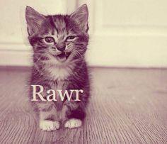Rawr; Furious word