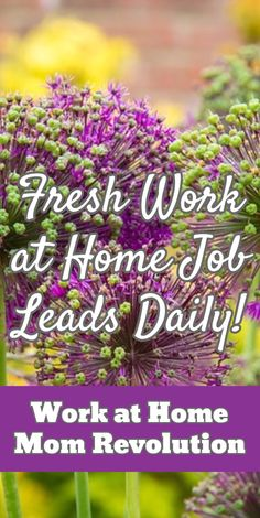 Fresh Work at Home Job Leads Daily! / Work at Home Mom Revolution