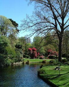 Avon river at the botanical gardens