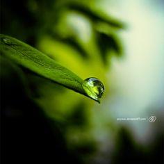 Rain drop by `sa-cool on deviantART