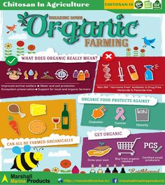 Conventional farming VS Organic Farming. Know the difference and be the change.  #organicfarming #livingsoil #chitosanInAgriculture #Chitosan #chemicalfreesoil #marshallmarineproducts