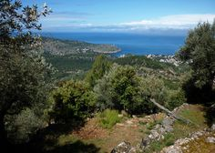 Mallorca bei So'ller http://fc-foto.de/24681014
