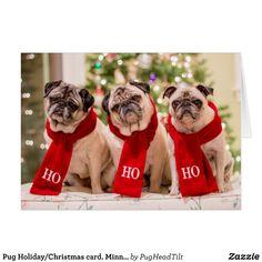 Pug Holiday/Christmas card. Minnie Max and Matti Card