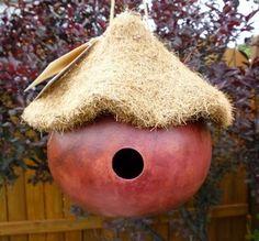 bird house gourd