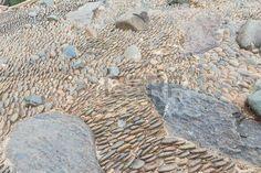 30347600: Sea stones background