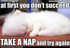 Autoimmune Diseases --- Before my autoimmune diseases started, I was NEVER a nap person.  Now, I feel like I need to take a nap ALL THE TIME.
