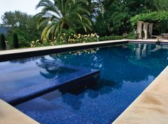 We are pretty sure we want to do a rectangular pool...This one is kinda cool - like the easy steps and hot tub on one end.  It is simple and clean - just my style. Like the color of Blue