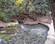 """Comal Springs, Texas ... originally within boundaries of land claimed by Tonkawas. The first Spanish explorer to visit the springs was Damián Massanet in 1691. The site was later home to a Spanish mission. Spanish settlers eventually called the site """"Las Fontanas"""" - the Fountains."""