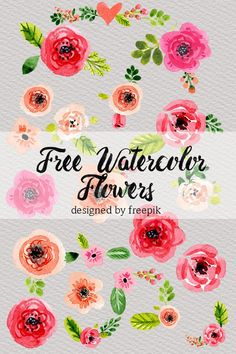 I searched high and low to bring you the best free watercolor clipart florals. I really hope you enjoy. Free Watercolor Flowers, Watercolour Art, Scrapbooking Digital, Planners, Illustration, Free Graphics, Planner Stickers, Flower Designs, Free Design