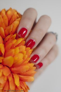 Nail Romance - orly gel fx red nails Shellac, Red Nails, How To Do Nails, You Nailed It, Nail Colors, Festive, Romance, Red Toenails, Romance Film