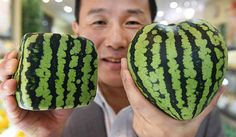 square and heart shape watermelon