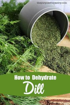 to Dehydrate Dill Weed How to dehydrate dill weed for your pantry and spice cabinet. Learn how easy dill weed is to preserve.How to dehydrate dill weed for your pantry and spice cabinet. Learn how easy dill weed is to preserve. Dehydrated Vegetables, Dehydrated Food, Veggies, Drying Herbs, Spices And Herbs, Fresh Herbs, Easy Herbs To Grow, How To Grow Dill, Cooking Tips