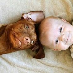 So cute baby and dog Animals And Pets, Baby Animals, Funny Animals, Cute Animals, Funniest Animals, Cute Puppies, Cute Dogs, Dogs And Puppies, Doggies