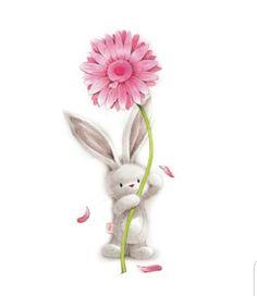 Cute sweet Bunny