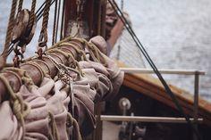 Land ahoy.