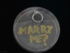 Microbiologists Marriage Proposal