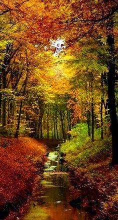 Dışımız günlük güneşlik içimiz eylül eylül sonbahar