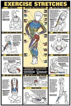 CO-ED Back Workout Professional Fitness Gym Instructional Wall Chart Poster - Fitnus Corp. Fitness Workouts, Fitness Diet, At Home Workouts, Fitness Motivation, Health Fitness, Health Club, Muscle Fitness, Fitness Games, Fitness Logo