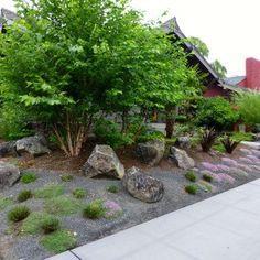 Native Garden with Trees and Boulders - Portland, Oregon Landscape Design Small, Creative Landscape, Tropical Plants, Garden Bridge, Nativity, Woodland, Garden Design, Home And Garden, Xeriscaping