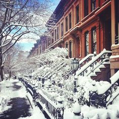 Park Slope #nemo - Brooklyn in the snow