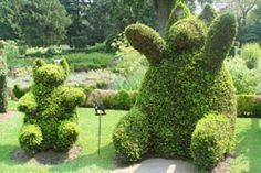 Portsmouth (RI) Green Animals Topiary Garden, oldest and farthest north topiary garden in the United States. Via The Preservation Society of Newport County Herb Garden, Vegetable Garden, Garden Art, Rose Arbor, Topiary Garden, Green Animals, Garden Route, All I Ever Wanted, Trees And Shrubs