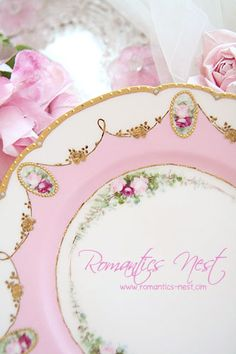 Haviland - HAND PAINTED ROSES & JEWELED PLATE