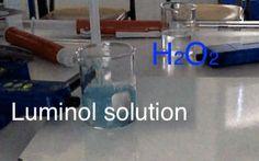 H2O2 + Luminol