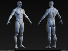 Male body high polygon mesh in Maya 3d Anatomy, Muscle Anatomy, Human Anatomy, Body Reference, Anatomy Reference, Wireframe, Sculpting Tutorials, Drawing Tutorials, Body Template