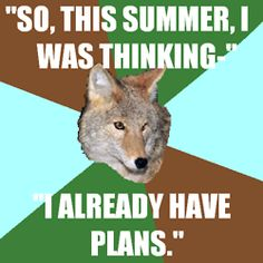 camp counselor coyote = my new favorite meme.
