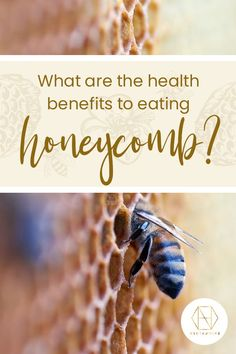 Because honeycomb such as our Australian Red Gum Comb Honey completely unprocessed, it's rich in the enzymes that give honey its antibacterial nature. Pure Honey, Raw Honey, Honey Bees, Can I Eat, I Can, Australian Honey, Bee Do, Best Honey, Bee Pollen