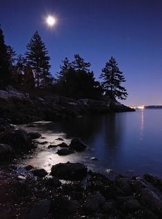 Moonlight on the Beach - Vancouver, British Columbia Copyright: Alvin Brown