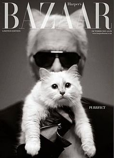 Karl Lagerfeld for Harpers Bazaar (UK), Limited-Edition, October 2013 | Magazine Cover: Graphic Design, Typography, Photography |