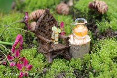 Lemonade in the fairy garden - see how to make yours - fun way to add charm to your garden #spon