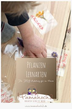 lernkarten pflanzen montessori lernen pflanzen frühblüher 1 Montessori, Diy Blog, Cards Against Humanity, Material, Kids Learning, Play Ideas