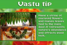 The colour green is also soothing and refreshing to the mind. People who have extremely stressful lifestyle find it relaxing to spend time in nature. Mango Leaves tied to the main door - 
