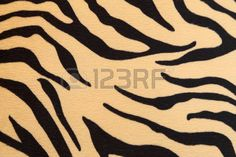 abstract tiger: abstract background with Bengal tiger texture Stock Photo