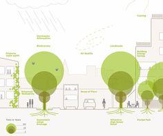 Nie wystarczy chcieć inwestować w miejską zieleń. Trzeba robić to dobrze, w bardzo przemyślany sposób. Tak przynajmniej przekonują eksperci The Trees and Design Action Group, brytyjskiego forum dialogu i projektowania przestrzeni miejskich z drzewami w roli głównej. Organizacja dostrzegła jak w miejskiej agendzie zyskuje na znaczeniu kwestia zadrzewiania i chce promować najlepsze praktyki w tym zakresie. Dla wszystkich urzędników i samorządowców przygotowali przewodnik jak z głową ubierać…
