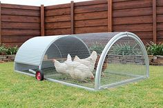 "Amazon.com : Chicken Roll Royal Rooster Chicken Tractor/Chicken Coop with run & wheels Backyard Hen House (Mesh 1"" aperture) : Garden & Outdoor"