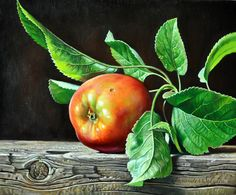 Oil on Canvas Apple Painting, Fruit Painting, Still Life Images, Still Life Art, Colour Pencil Shading, Colored Pencil Artwork, Hyper Realistic Paintings, Apple Art, Candy Art