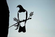 Add a bird silhouettes from Metalbird to your own landscape or give on as a gift. View the collection and get one today. Metal Garden Art, Metal Art, Nz Art, Bar Design, Maori Art, Kiwiana, Metal Birds, Bird Silhouette, Outdoor Art