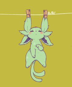 Evoli / corde à linge