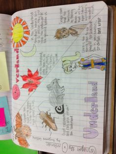 Writing about reading: offering students choice in reading responses | TWO WRITING TEACHERS. Tara shares the way she revisioned student response to reading in her classroom. Many possibilities suggested.