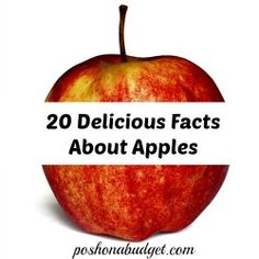 It's apple season around here which means, for many of us, the kick-off of the fall season. 20 Delicious Facts About Apples 1. Apples are grown in all 50 states. 2. Apples are fat, sodium, and cholesterol free. 3. Apples are a great source of the fiber pectin. One apple has five grams of fiber