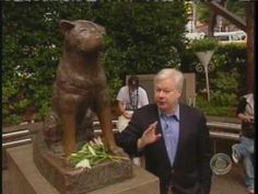 Hachiko: A Dog's Story of Loyalty in Tokyo