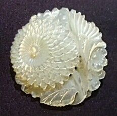 Carved Mother of Pearl Floral Button; Bethlehem?