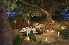 TREE ROOTS: Dinner for two at the Hacienda San Jorge, a hotel on the Canary Island of La Palma, Spain.