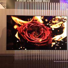 IFA 2016: Panasonic svela un nuovo TV OLED Panasonic sta lavorando a una nuova generazione di televisori OLED che offriranno un livello dei neri mai raggiunto prima. All'IFA 2016 di Berlino il costruttore giapponese ha mostrato il primo prototipo.