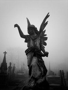 #angel #graveyard
